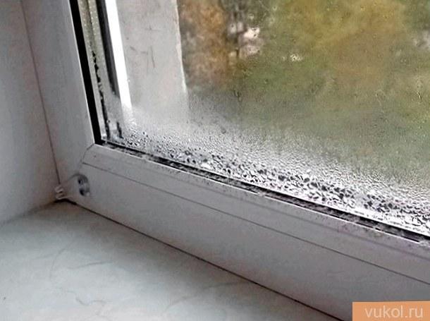 Из-за чего потеют пластмассовые окна